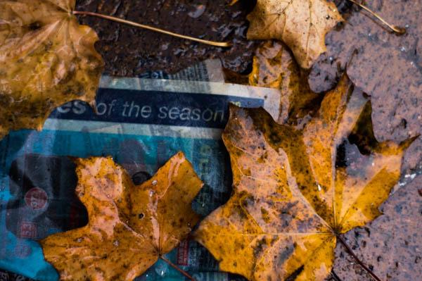 Of the season